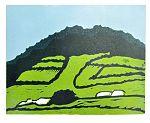 Yvette-Oostendorp---landschap---lino-2009---DSC 1401